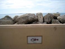 Palma de Mallorca seaside
