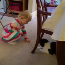 My darling niece trying to make friends with my cat