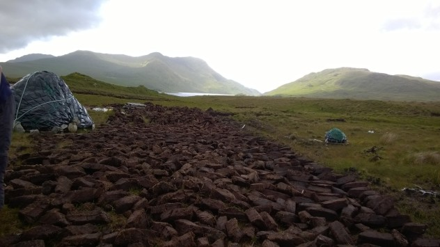 Turf cut from a bog, now drying. When dry, it will be burned as fuel.